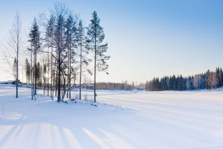 ski traces: Beautiful winter landscape in Finland. Tahko resort, January 2009.