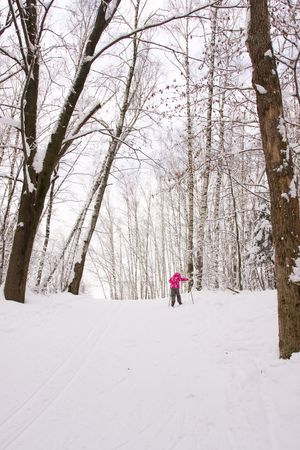 5 year old girl cross-country skiing in a forest photo