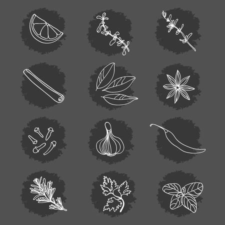 Spezie ed erbe aromatiche. Collezione. Limone, maggiorana, timo, cannella, alloro, anice stellato, chiodi di garofano, aglio, pepe, rosmarino, prezzemolo, basilico.