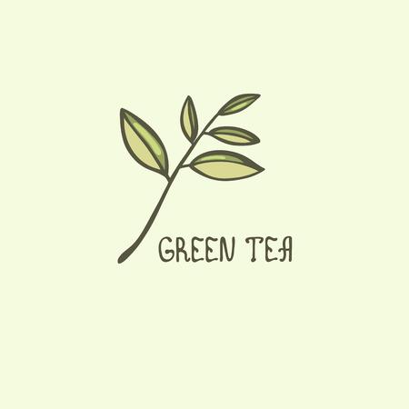 A leaf of green tea. Lettering. Vector illustration.  イラスト・ベクター素材