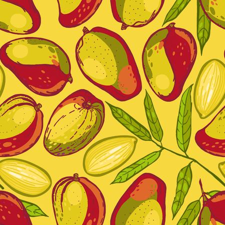 Seamless pattern with mango. Collection of mangos. Tropical fruit. Hand drawn food background. Vector illustration.