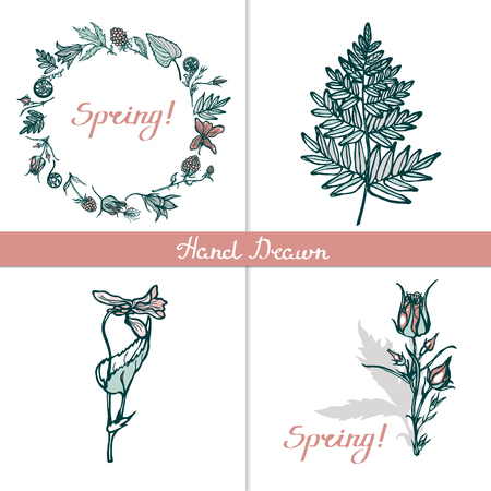 Set cards with wild plants. Wreath, seamless pattern, isolated objects, lettering. Congratulations to the spring. Fern, cloudberries, Geum Rivale, bluebells, violets. Hand drawn. Vector illustration.  イラスト・ベクター素材