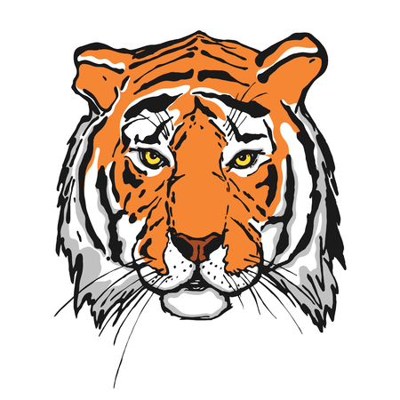 Tiger. Head. Wild animal. The logo for your design. Hand drawn. Vector illustration.
