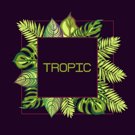 Frame with tropical leaves and the word