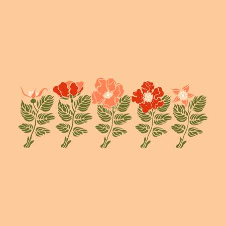 Rosehip, wild rose. Rosales. Botanical illustration. Vector.  イラスト・ベクター素材