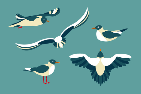 The seagulls. Set of seabirds in the style of flat.