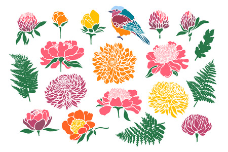Set with birds and flowers. Peony, chrysanthemum, clover, tulip, fern. Vector illustration. Illustration