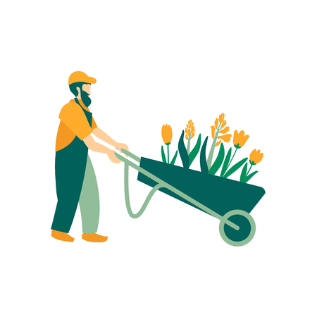 An elderly gardener man in a cart carries flowers. In the cart spring tulips and hyacinths. The farmer is engaged in planting. Work spring and summer season. Vector illustration in flat style. Ilustração