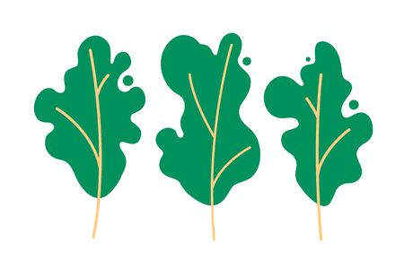 Set of trees. Preservation and protection of the environment, cultivation of gardens, ecology, clean air. Ilustração