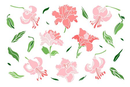 Set of lily flowers, leaf, bud. Isolated flowers for design of cards, invitations, textures. Vector illustration. 矢量图像