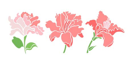 Set of three lily flowers. Isolated flowers for design of cards, invitations, textures. Vector illustration. Foto de archivo - 132026363