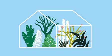 Greenhouse with cacti, succulents and palm trees. Tropical house for plants. Vector illustration. Banco de Imagens - 132026243