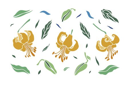 Set of three lily flowers. Isolated flowers for design of cards, invitations, textures. Vector illustration.