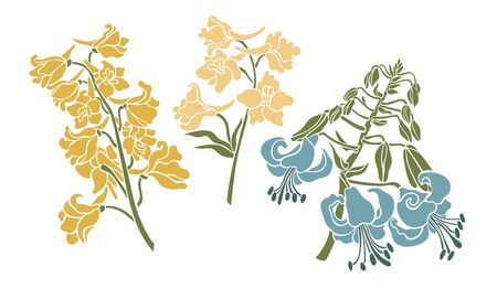 Botanical flower collection. Lily and delphiniums. Vector illustration.