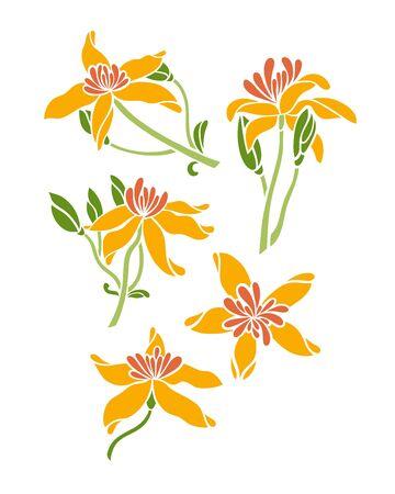 Flower clematis set. Vector illustration. 矢量图像