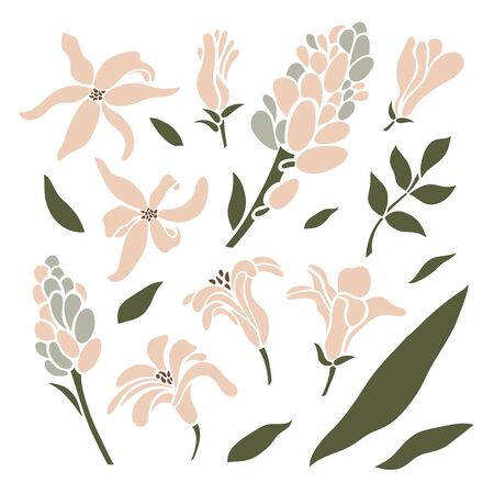 Set of leaves, inflorescences, buds and buds of hyacinth. Flower collection. Vector illustration.