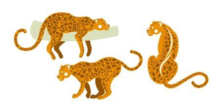 Tropical fauna of mammals. Set of wild leopards. Vector illustration. Illustration