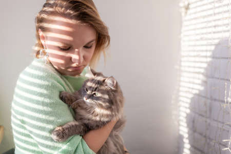 Close up of Handsome European young woman in green sweater with Gray domestic cat, solar shade from blinds. human-animal relationships. Cute picture of animal. Image for veterinary clinics and sites.