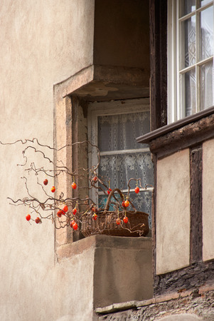 vins: Beautiful city Mittelbergheim in Alsace in France