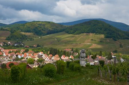 andlau: Beautiful city Andlau in Alsace in France