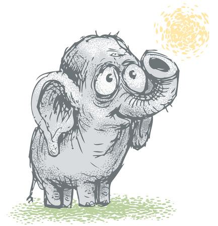 Cartoon young elephant.  Vector