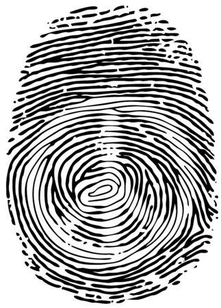 thumb print: Vector Thumb Print. Eps8.