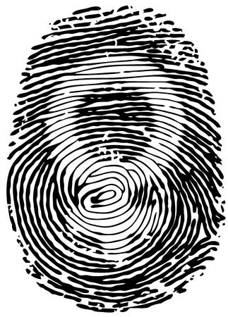 gender identity: Vector Thumb Print. Eps8.