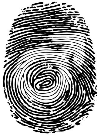 thumb print: Vector thumb print with male gender symbol