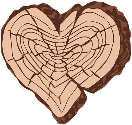 tree stump: Timber heart shape. Eps8. CMYK. Organized by layers. Easy modified. Gradients free.