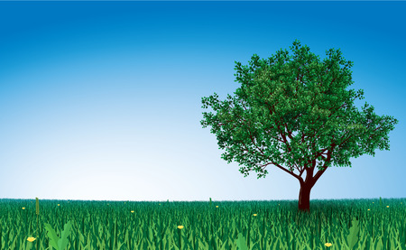 tree grass: Lonely tree on green field. Eps8. CMYK. Organized by layers. Gradient used on sky. Illustration