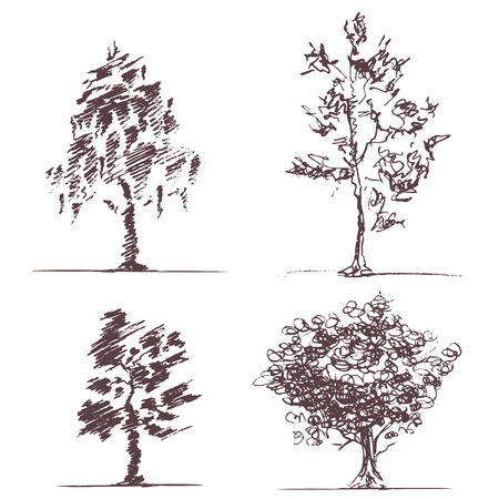 broadleaved tree: Four hand-drawn sketches of trees. CMYK. Gradients free. Global color.