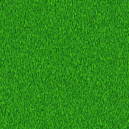 Green grass. Textured vector background