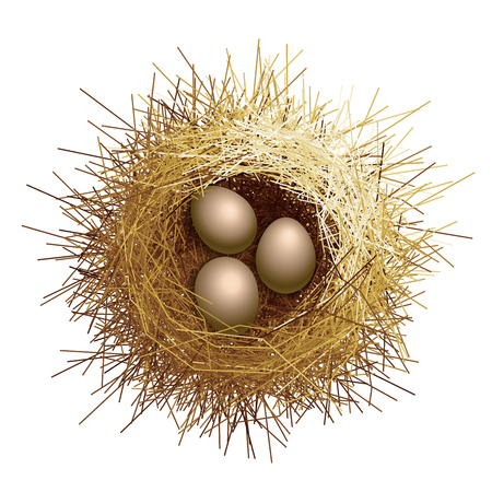 Vector birds nest with eggs. Top view Illustration