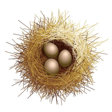 Vektor Vogelnest mit Eiern. Ansicht von oben Standard-Bild - 88909335