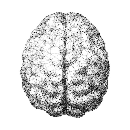 Human brain consist of dots connected by lines in top view