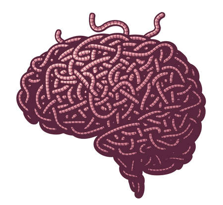Human brain consist of disorderly interlacing earthworms