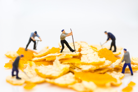 Miniature people : Workers are peeling orange peels. Image use for teamwork, business concept.