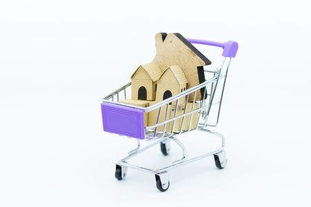 shopping cart with home.  Image use for Business consultants on financial transactions for home loan.