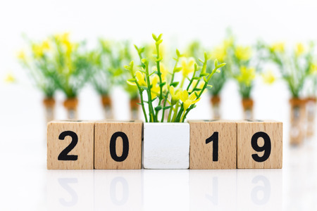 wooden block number 2019. Image use for background happy new year, business concept. Stock Photo