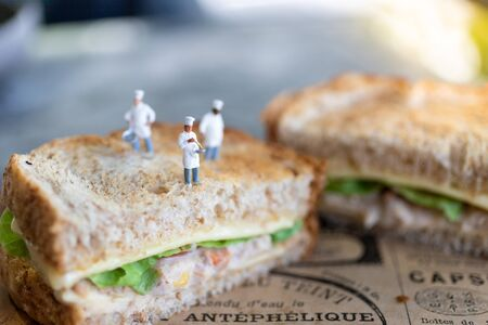 Miniature people: Chefs provide food menus for customers, image use for serving nutrition, food and beverage concept