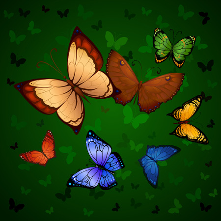 resemble: Flying bright butterflies resemble the summer. Background for beauty and a sense of celebration Illustration