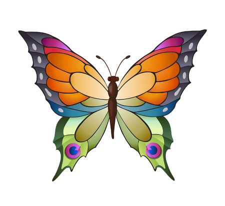 varied: Bright butterfly for decoration design Illustration