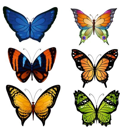 Bright color vector set of bright butterflies for decoration design