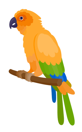 little one: Yellow parrot with colorful feathers, isolated vector illustration.  Perfect cards or any other kind of design