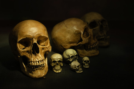 dimly: Scary-looking and dimly lit of human skull on black background. Stock Photo