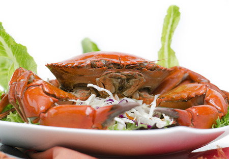serrated: Steamed brown crab on a plate of salad isolated against white.