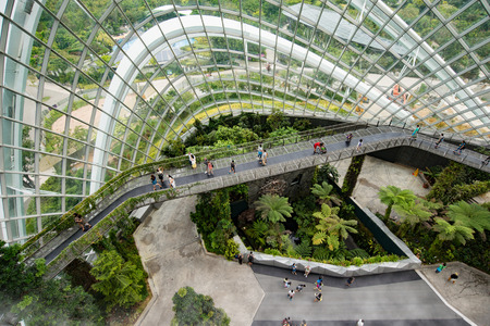 conservatories: Display in the cloud forest, one of two conservatories within the Gardens by the Bay