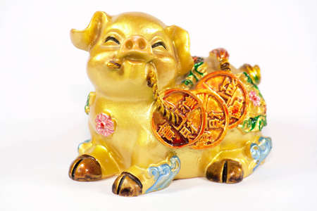 asian coins: Golden pig carrying gold coins foe wealth Stock Photo