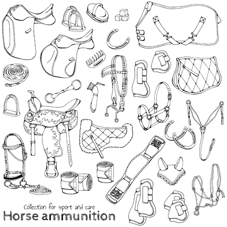 Group of vector illustrations on the theme horse ammunition; Set of isolated objects for equestrian sport and care. Illustration