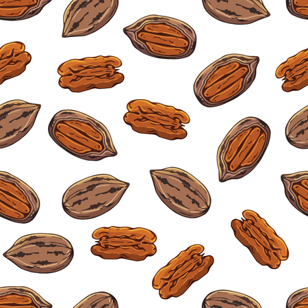 Pattern of vector colorful illustrations on the nutrition theme; set of pecans. Realistic isolated objects for your design.